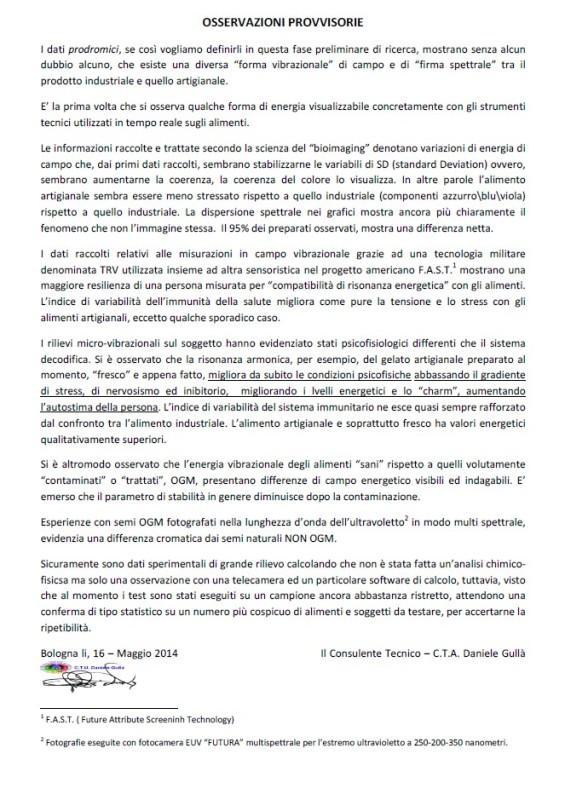 DGulla_05_CONCLUSIONI